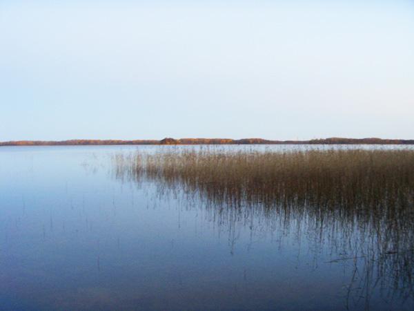 Озеро Большое Олбито, на котором стоит деревня. Размер примерно 3х4 км