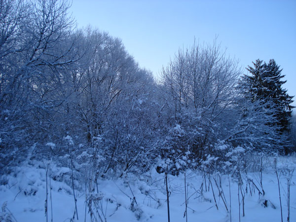 Дед мороз ссср новогодняя