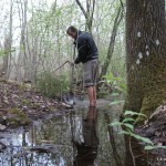 Плодородную почву брали из западной низины-болота