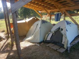 илья волонтер палатка