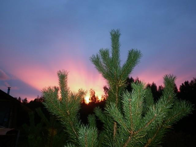 яромир - закат